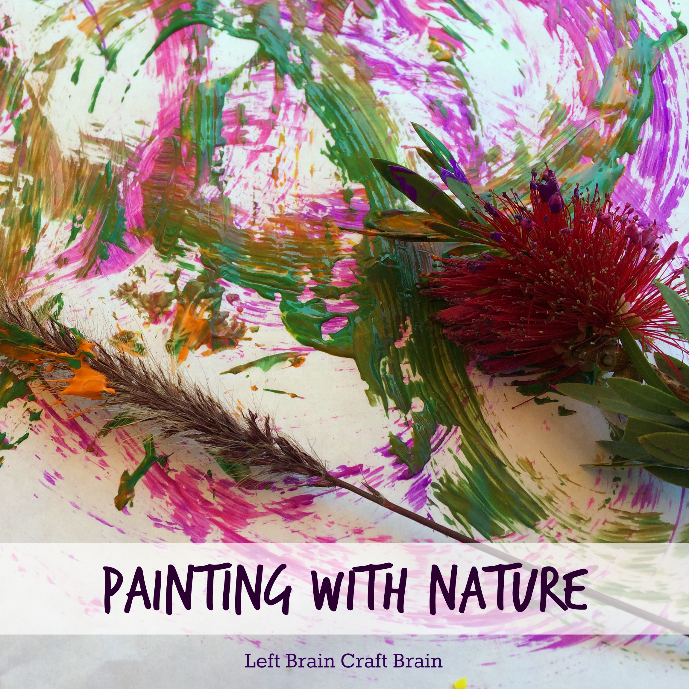 painting with nature natural paintbrushes