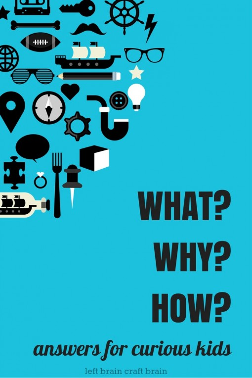 What Why How Left Brain Craft Brain