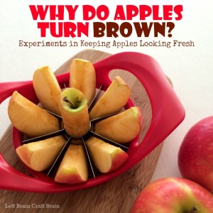 Why Do Apples Turn Brown Experiments in Keeping Apples Looking Fresh Left Brain Craft Brain FB