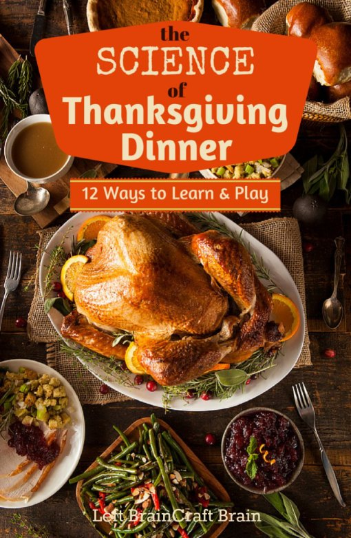 The Science of Thanksgiving Dinner - 12 Ways to Learn & Play. You'll find lots of interesting science facts perfect for Thanksgiving conversation starters plus fun activities for the kids for every traditional Thanksgiving food.