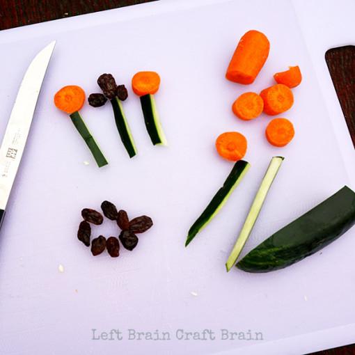 Carrot and Raisin Flowers LBCB 2