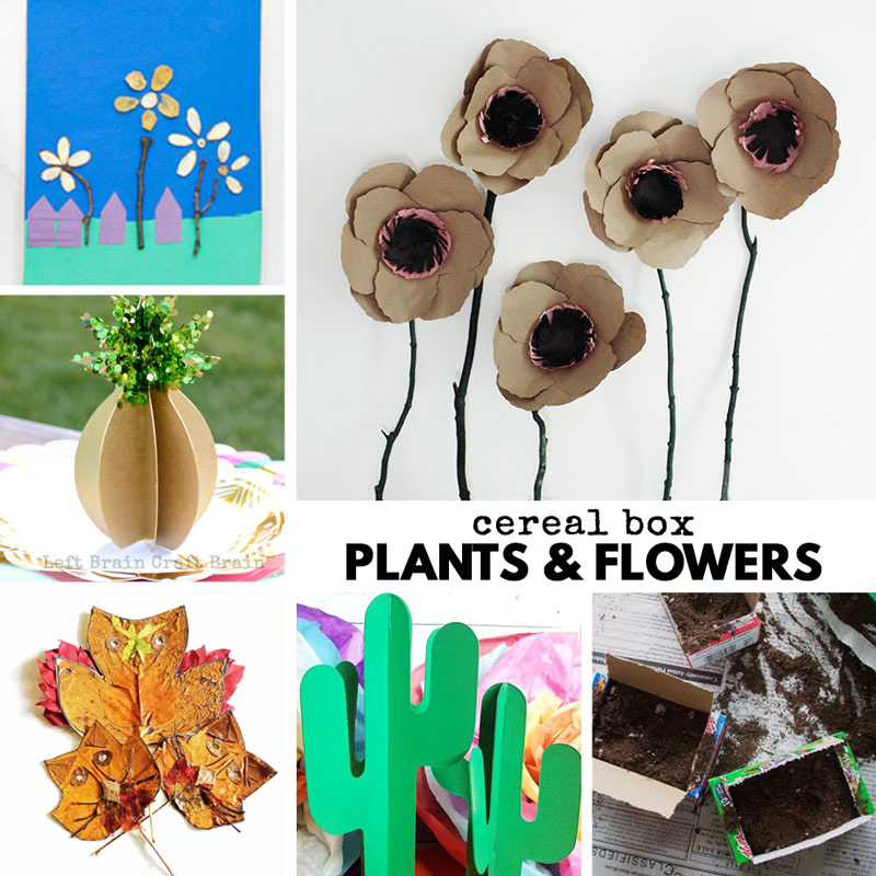 cereal box plants and flowers
