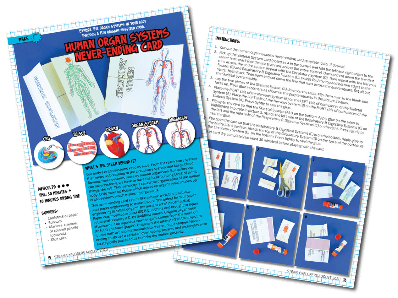 human body activities - two page - transparent - compressed