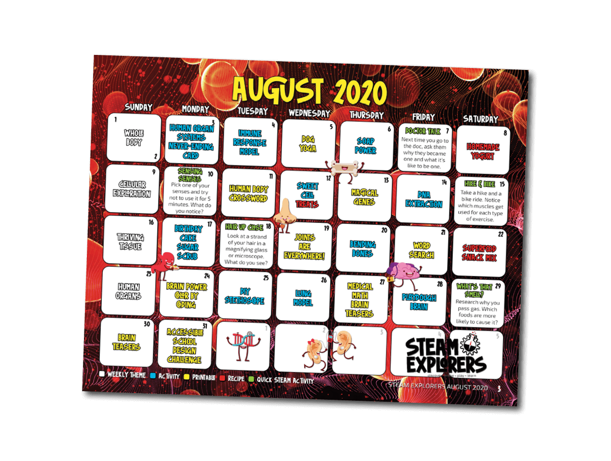 human body calendar - two page - transparent